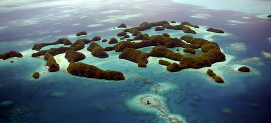 Le 70 Isole di Palau