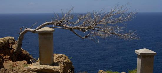 Immagini di Antigua
