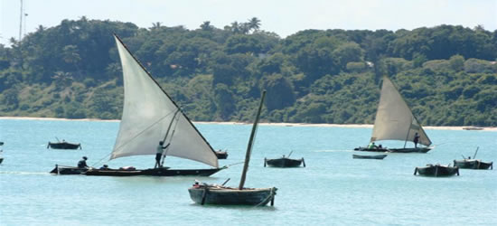 Imabarcazioni locali, Zanzibar