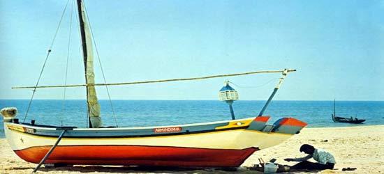 Lance di vela, barche da pesca