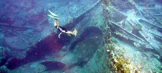 Eccellente immersione sul relitto del Rodano Cesare
