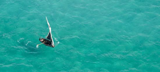 Foto aerea di un sambuco in Mozambico