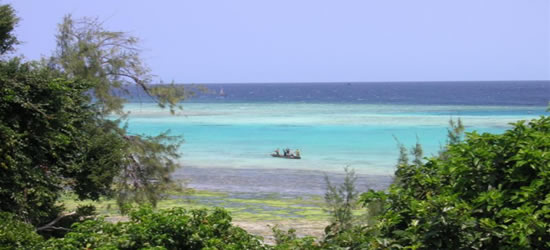 Manta Reef, Zanzibar