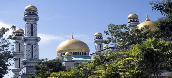 Immagini di Borneo