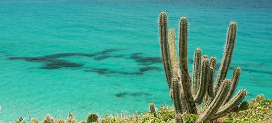 Los Roques Seascape