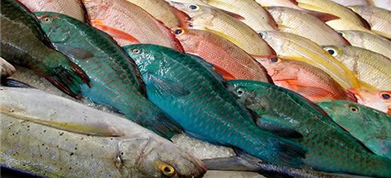 Il Mercato del Pesce, Tahiti