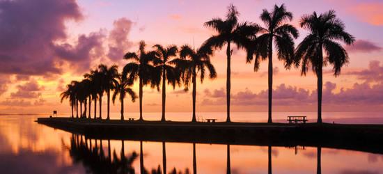 Alba a Cutler Bay, Miami