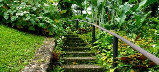 Giardino Botanico, Saint Vincent